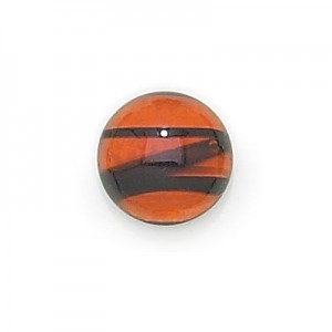 5mm Tortoise Shell Transparent Round Glass Cabochons