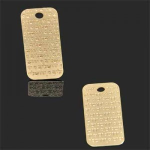 24x10mm Jerusalem Star of David Bas-Relief Charm Forever Gold™ 2pcs