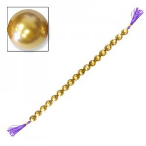 8mm Gold 16 Inch Strand Shell Pearl